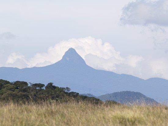 Piyapath Lanka