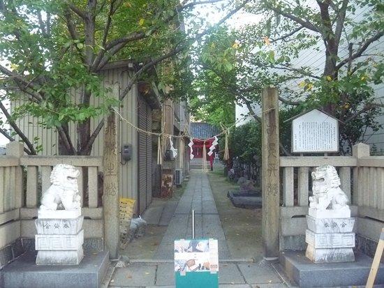 Jinkuro Inari