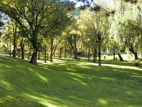 Hokkaido University Central Lawn