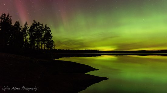Fagersta, Zweden: Northern lights photographed in Västmanland