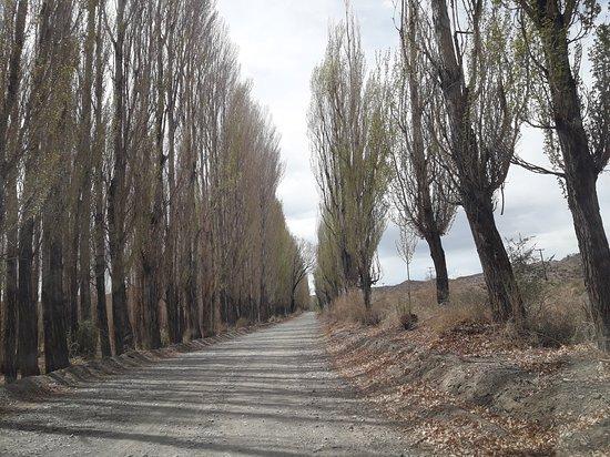Parque Nacional El Leoncito: Camino de entrada.