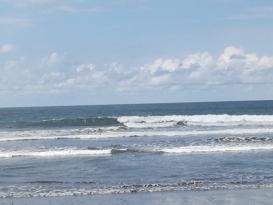 Nosara Beach (Playa Guiones): IMG_20181010_102332_large.jpg