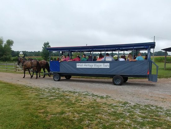 Ethridge, TN: Our most popular group tour is a wagon ride through the Amish countryside, then a tour of the Mu