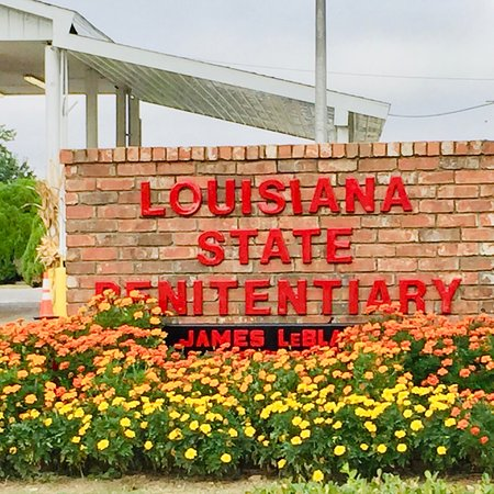 Historic Angola Hard Time Louisiana Prison Farm - Everybody Worked