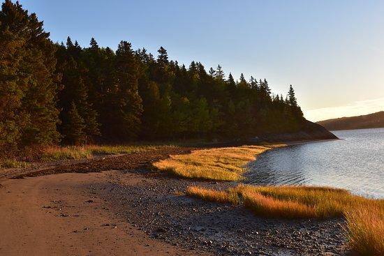 Parc National du Bic: L'île aux amours accessible à marée basse