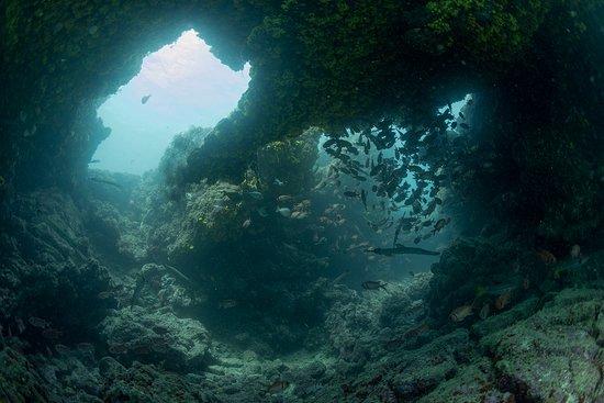 Tarrafal, Cabo Verde: Dieser wunderbare Torbogen mit viel Fisch gehört zum Hausriff. Für gute Schnorchler auch erreich
