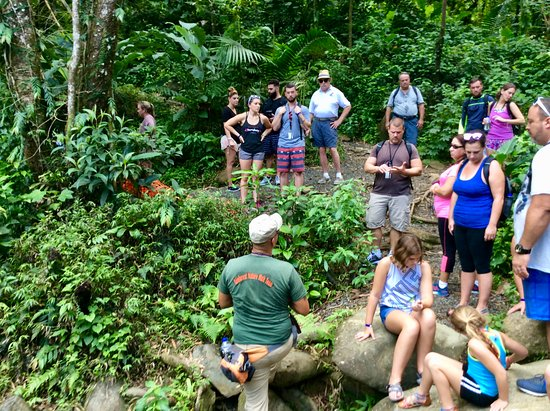 Rio Grande, Puerto Rico: Guide teaching guests about the El Yunque National Forest!