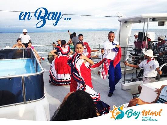 Bay Island Cruises - Day Tours