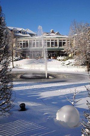 Halle Westfalen, Germany: Winter image