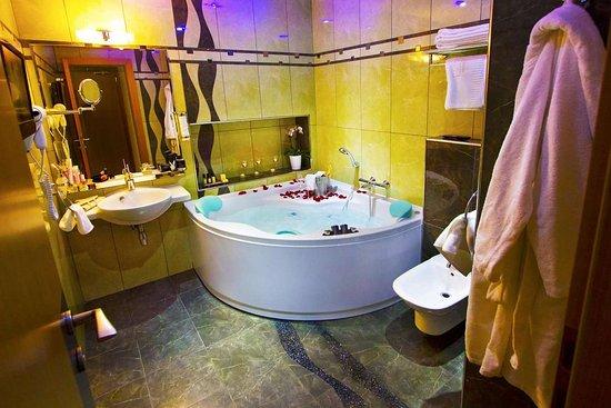 Hotel Danubia Gate Bratislava: Guestroom DLR 4
