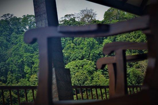 Gatambe Photo