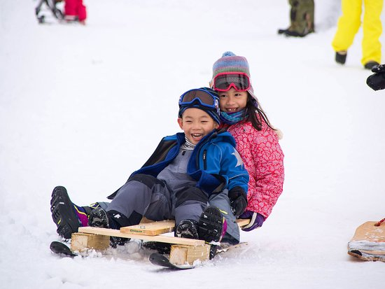 Kutchan-cho, Nhật Bản: Snow sled building and testing in winter