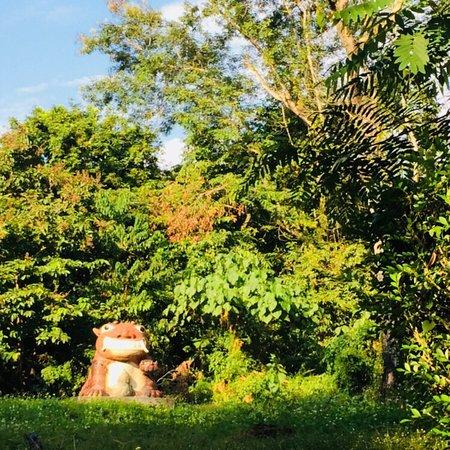 Jiujiu Feng Eco-Art Park