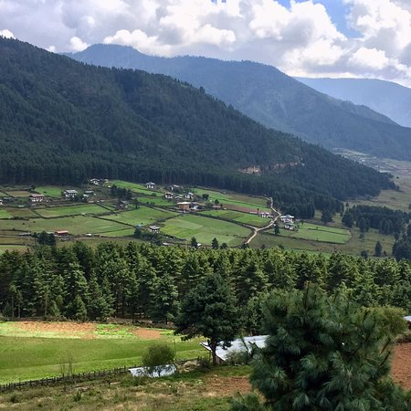 Gangtey, Бутан: photo8.jpg
