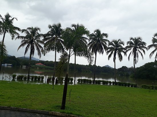 Periyar Resorts: Lawn