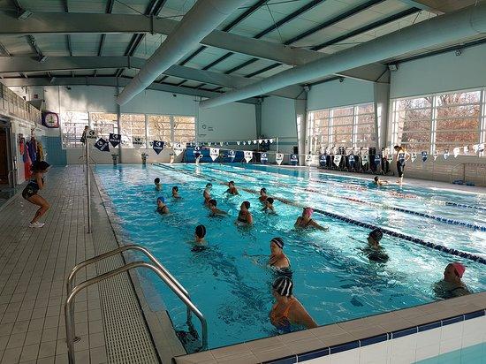 Ssd Centro Nuoto Lanzo