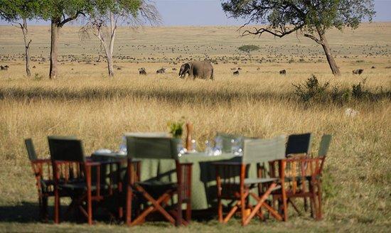 Tanzania Oribi Safaris