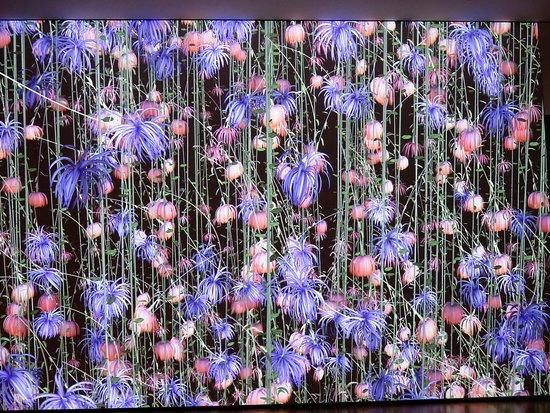 Williamstown, MA: Jennifer Steinkamp' Blind Eye temporary exhibition