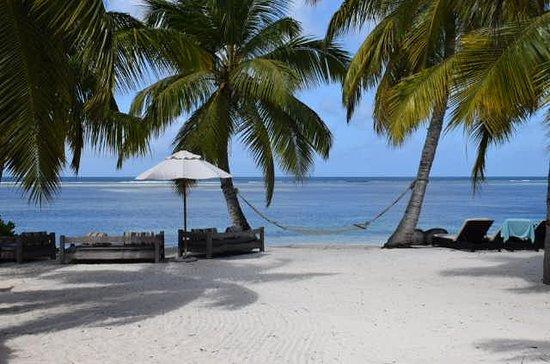 Alphonse Island, เซเชลส์: 291940a4_large.jpg