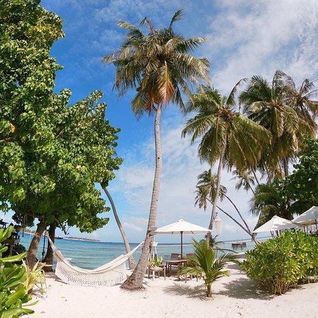 Thulusdhoo Island: photo4.jpg