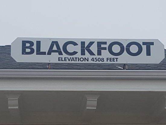 Blackfoot Foto