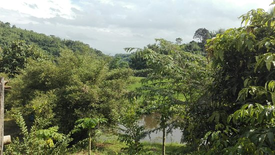 Bamboo Tours ภาพถ่าย