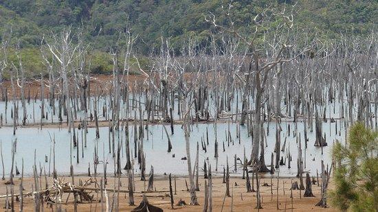 Yate, كاليدونيا الجديدة: Le lac