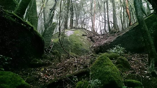 Shiratani Unsuikyo Valley: FB_IMG_1539439143357_large.jpg