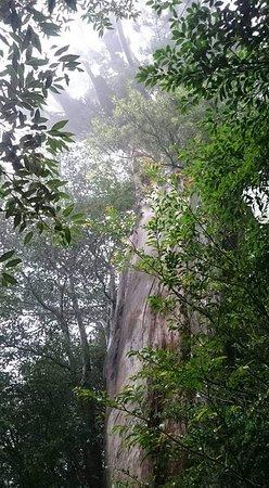 Shiratani Unsuikyo Valley: FB_IMG_1539439140827_large.jpg