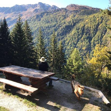 Vercorin, Switzerland: photo1.jpg