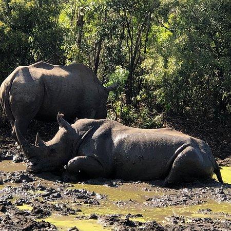 Heritage Day Tours & Safaris: photo4.jpg