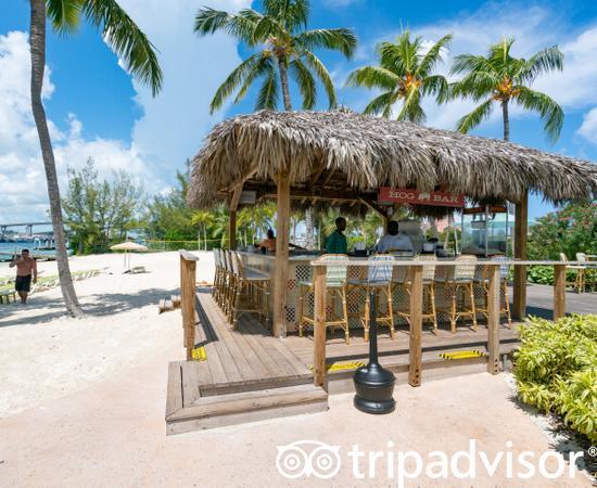 Gutes All Inclusive Hotel Nicht Herausragend Warwick Paradise Island Bahamas All Inclusive Paradise Island Bewertungen Tripadvisor