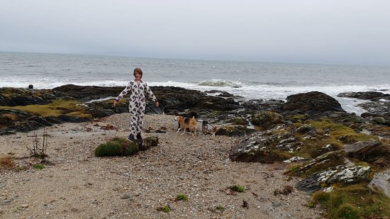 Kilberry, UK: Tent right on beach