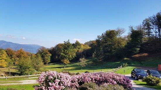 Madonna del Sasso, Italy: Castagne, relax e ottimo pranzo