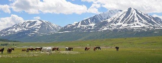 Bayan-Olgii Province, Mongoliet: Altai mountain with Bulbul Jamak Travel