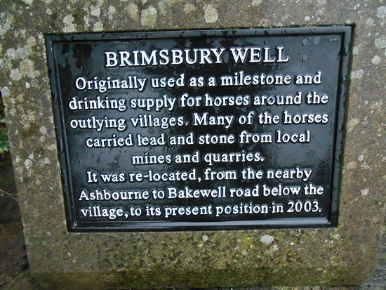 ‪‪Birchover and Stanton Moor‬: The local well is situated at the side of The Red Lion public house in Birchover‬