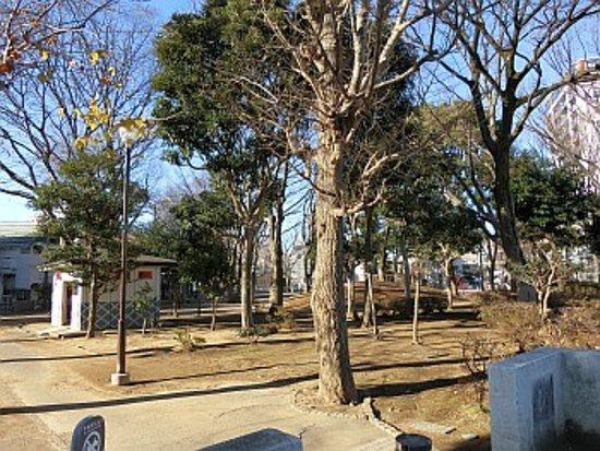 Itabashi, Japan: 園内の様子