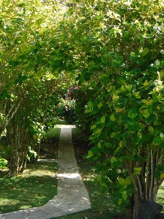 Ofu, Amerikanisch-Samoa: Some of the garden area at Vaoto Lodge