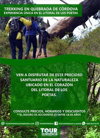 Trekking Quebrada de Córdova (límite comunas de El Quisco y El Tabo)