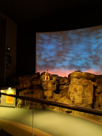 Buffalo Bill Historical Center afbeelding