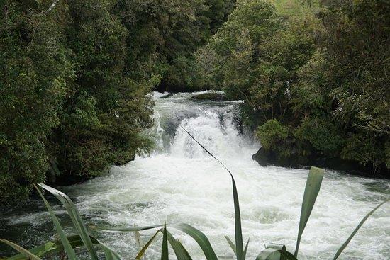 Okere Falls Foto