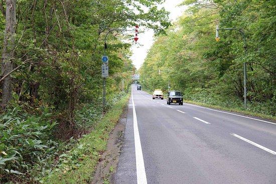 Shikotsu Lake Sky Road