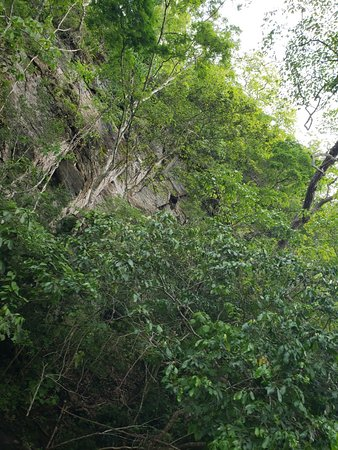 Estancia Mimosa Ecoturismo: 20181012_150228_large.jpg
