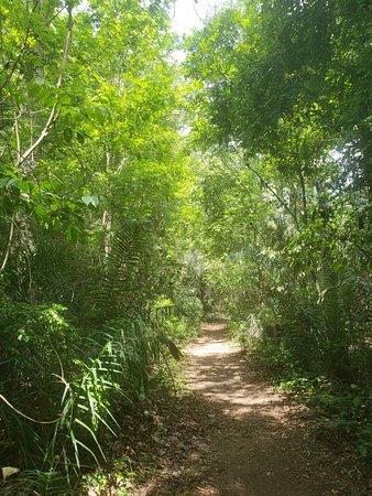Estancia Mimosa Ecoturismo: 20181012_140555_large.jpg