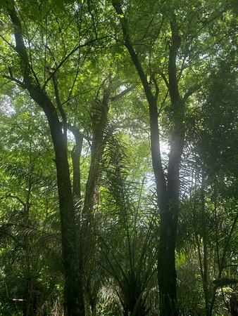 Estancia Mimosa Ecoturismo: 20181012_140541_large.jpg