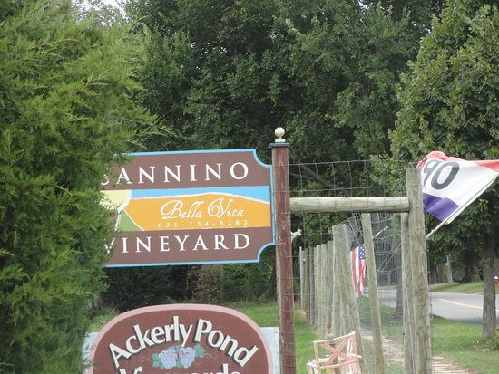 Peconic, NY: I am waiting for the sign at the new tasting room......
