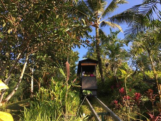 Hanging Gardens of Bali Photo