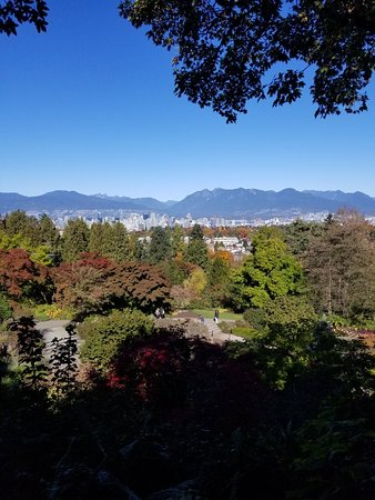 Seasons in the Park: 20181013_125031_large.jpg
