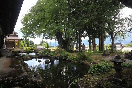 Minamiuonuma, Giappone: 薬照寺:境内