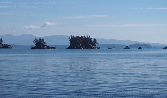 Archipelago Wildlife Cruises: Tthe Broken Islands, part of the Pacific Rim National Park.